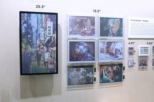 gallery-palette